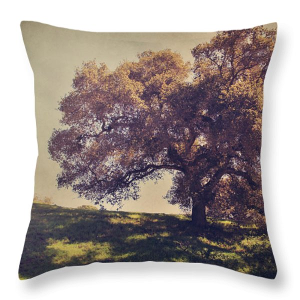 I Wish You Had Meant It Throw Pillow by Laurie Search
