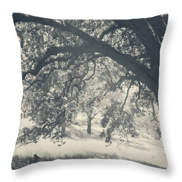 I Would Wrap My Arms Around You Throw Pillow by Laurie Search