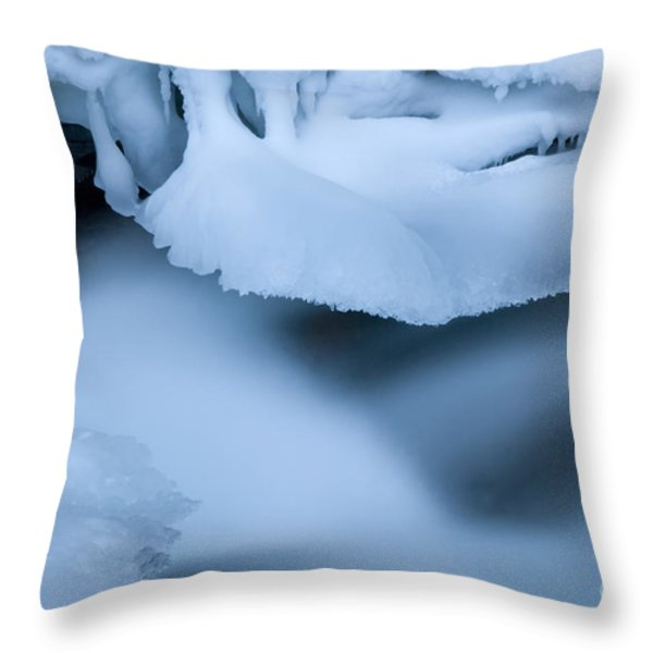 Ice 19 Throw Pillow by Bob Christopher