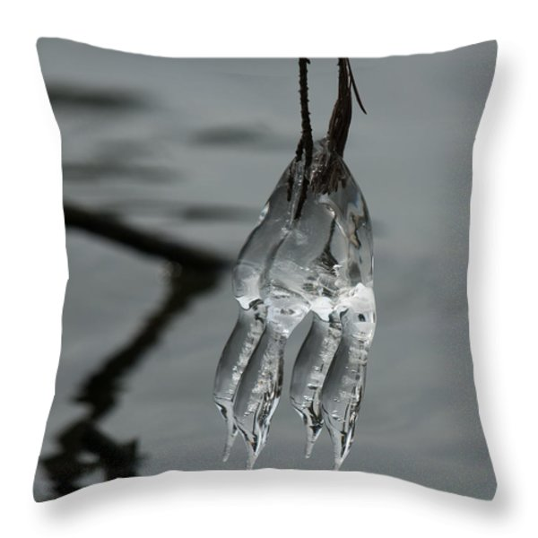 Ice Dance Throw Pillow by Lara Ellis
