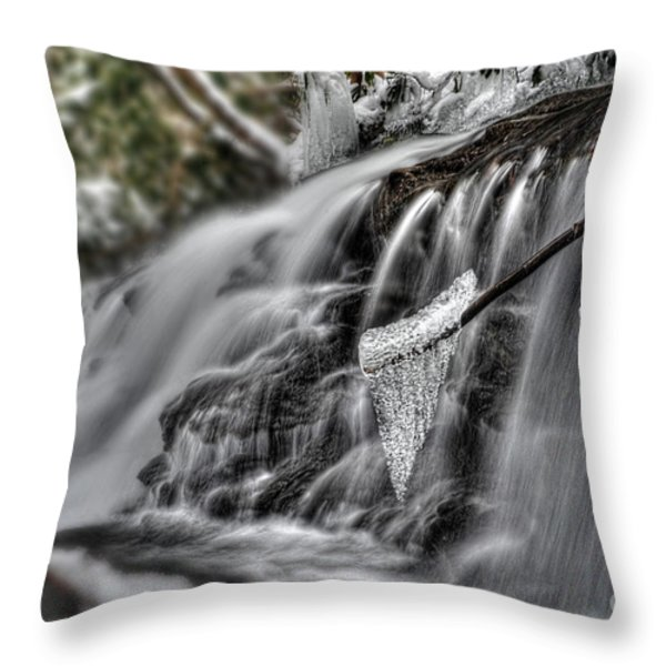 Ice On A Stick Throw Pillow by Dan Friend