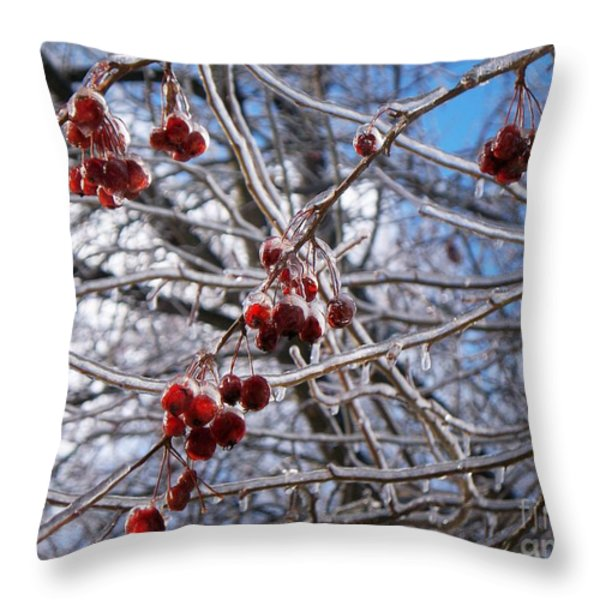 Ice On The Crab-apples Throw Pillow by Joy Nichols