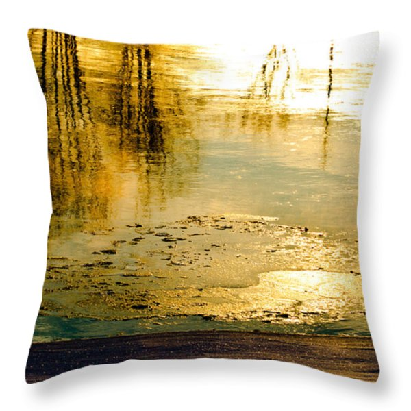 Ice On The River Throw Pillow by Bob Orsillo