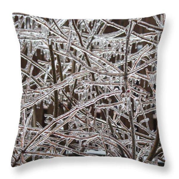 Ice Storm Throw Pillow by Arlene Carmel