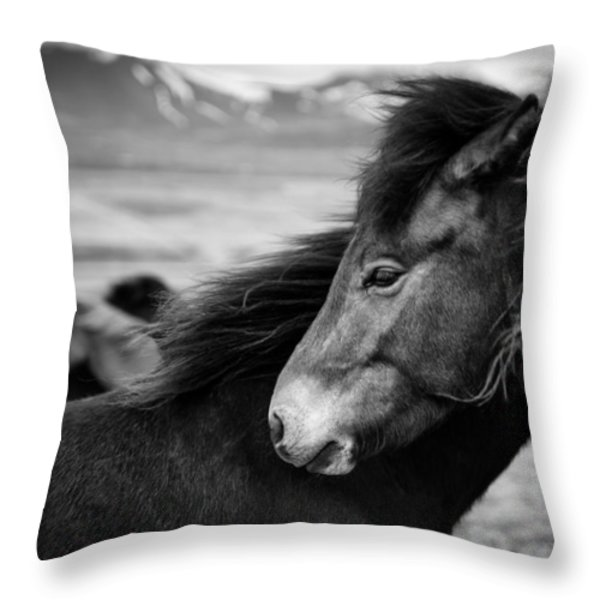 Icelandic Horses Throw Pillow by Dave Bowman