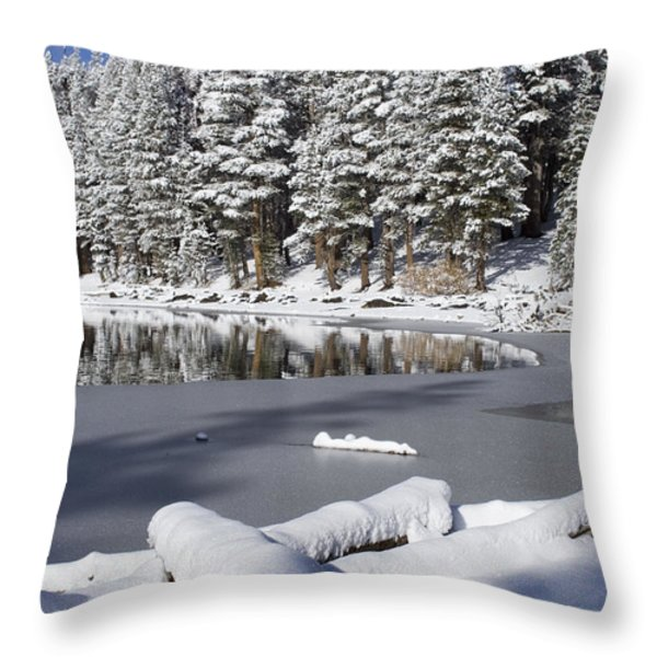 Icy Cold Throw Pillow by Chris Brannen