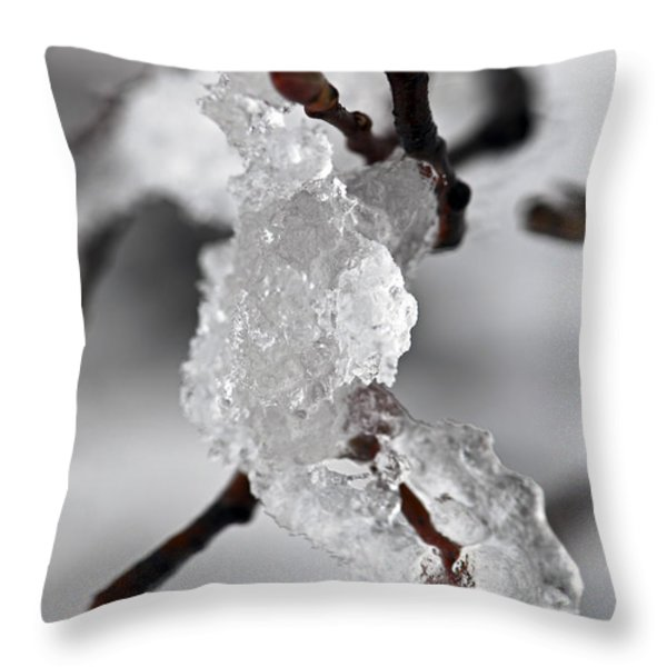 Icy elegance Throw Pillow by Elena Elisseeva