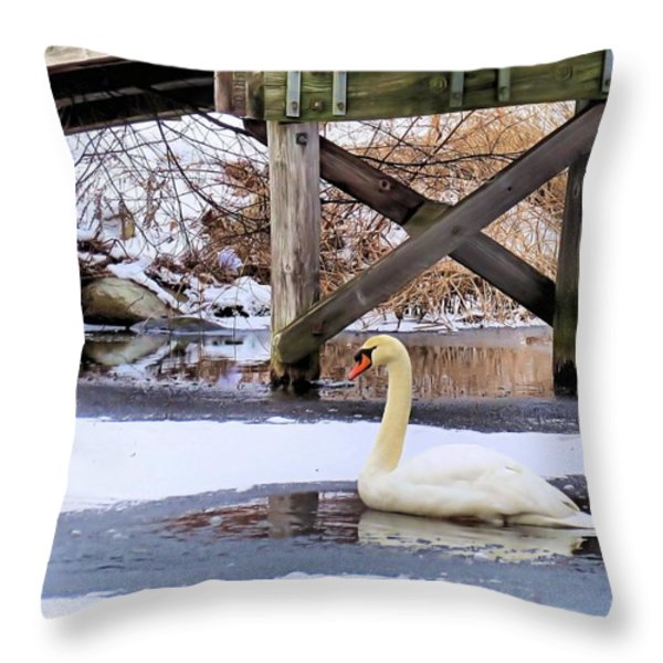 Icy Pond Throw Pillow by Janice Drew