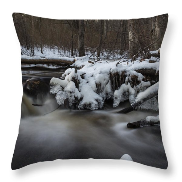 Icy Waters Throw Pillow by Andrew Pacheco