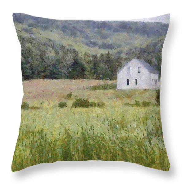 Idyllic Isolation Throw Pillow by Jeff Kolker