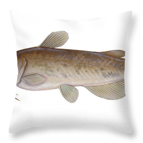 Illustration Of A Brown Bullhead Throw Pillow by Carlyn Iverson
