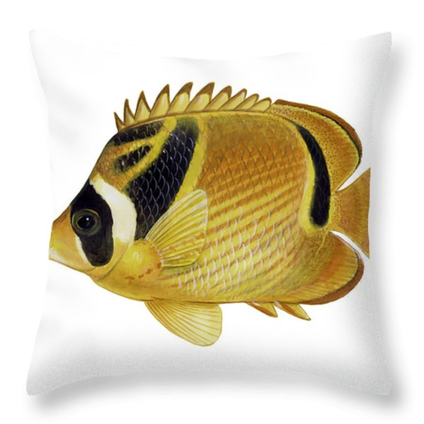 Illustration Of A Raccoon Butterflyfish Throw Pillow by Carlyn Iverson