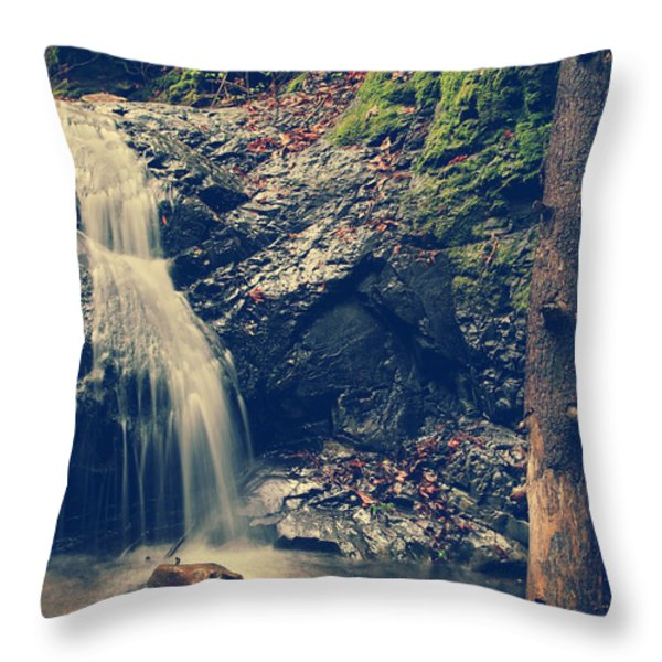 I'm Not Giving Up On You Throw Pillow by Laurie Search