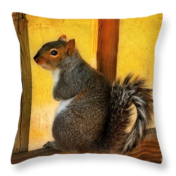I'm Sorry Throw Pillow by Lois Bryan
