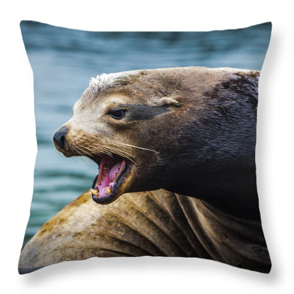 I'm The Boss Throw Pillow by David Millenheft