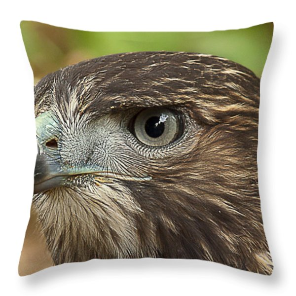 I'm Watching You Throw Pillow by Randy Hall