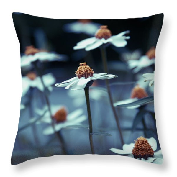 Imagine f03a Throw Pillow by Variance Collections