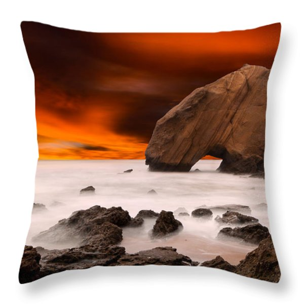 Imagine Throw Pillow by Jorge Maia