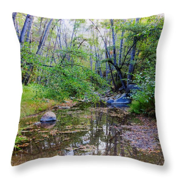 Imagine Us Together Here Throw Pillow by Heidi Smith