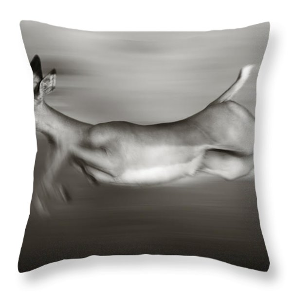 Impala Running  Throw Pillow by Johan Swanepoel