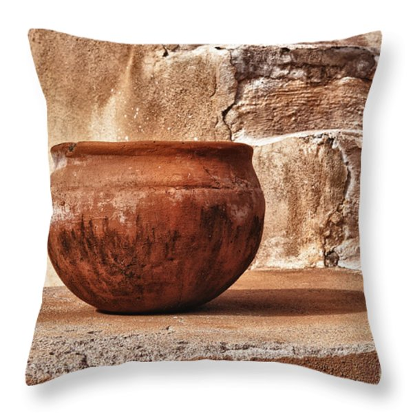 In Another Life Throw Pillow by Sandra Bronstein