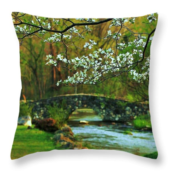 In Bloom Throw Pillow by Benjamin Yeager