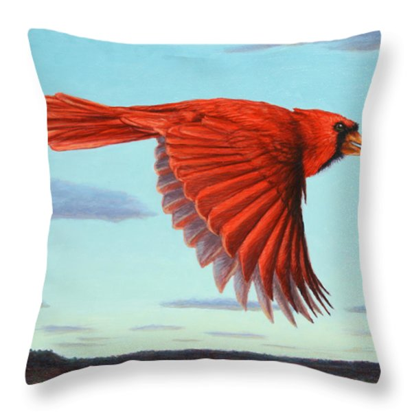 In Flight Throw Pillow by James W Johnson