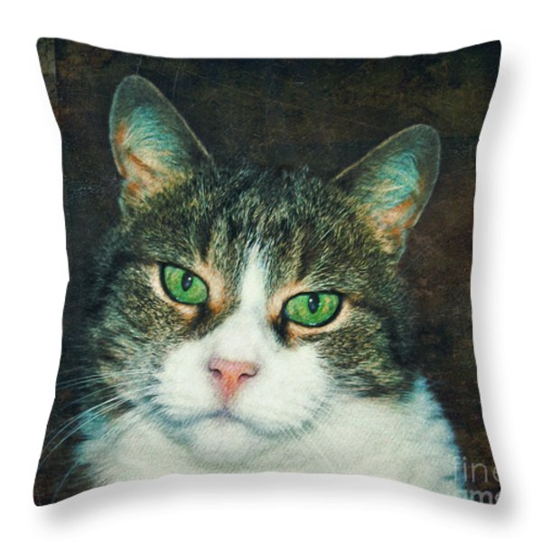 In Memoriam Throw Pillow by Jutta Maria Pusl