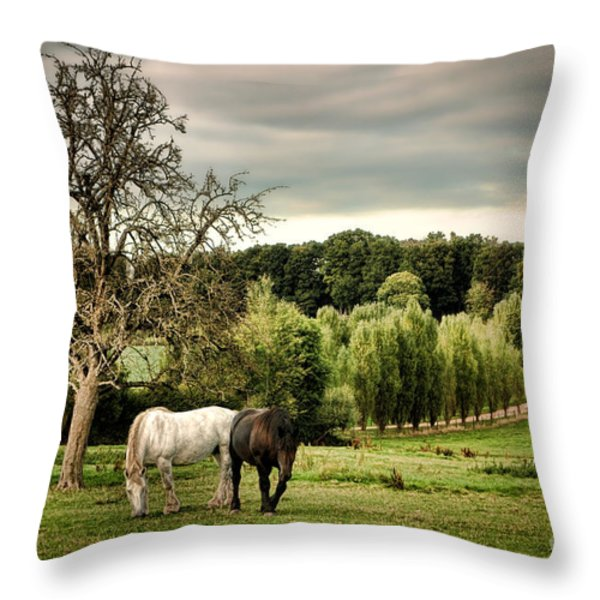 In Perche Throw Pillow by Olivier Le Queinec