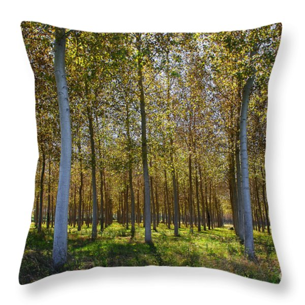 In Rank And File  Throw Pillow by Hannes Cmarits