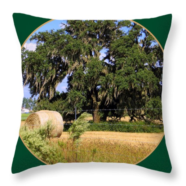 In The Country Throw Pillow by Dorothy Menera