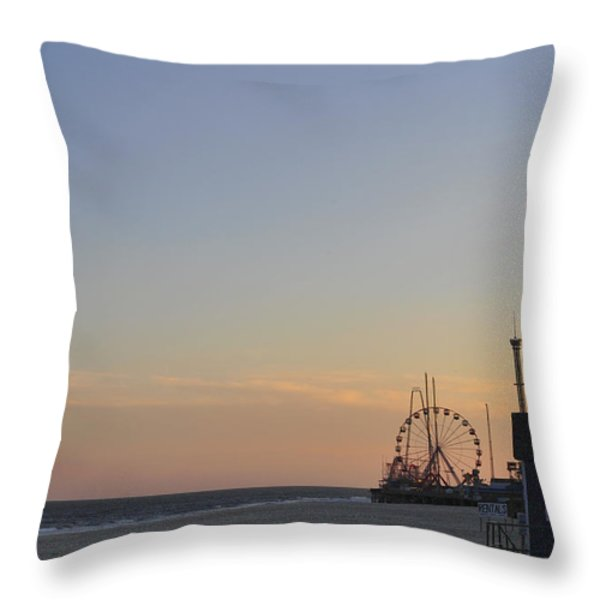 In the Distance Throw Pillow by Terry DeLuco