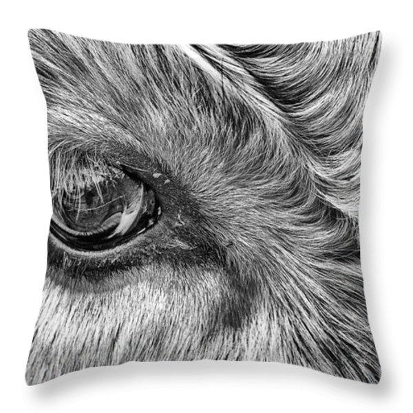 in the eye Throw Pillow by John Farnan