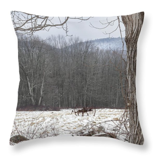 In the field Throw Pillow by Bill  Wakeley