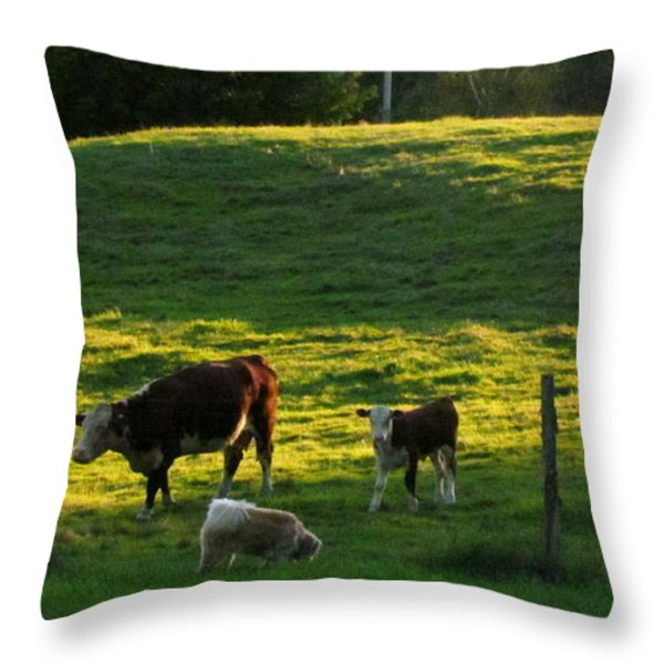 In the Field Throw Pillow by Randi Shenkman