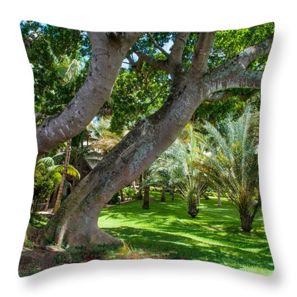 In The Garden. Mauritius Throw Pillow by Jenny Rainbow