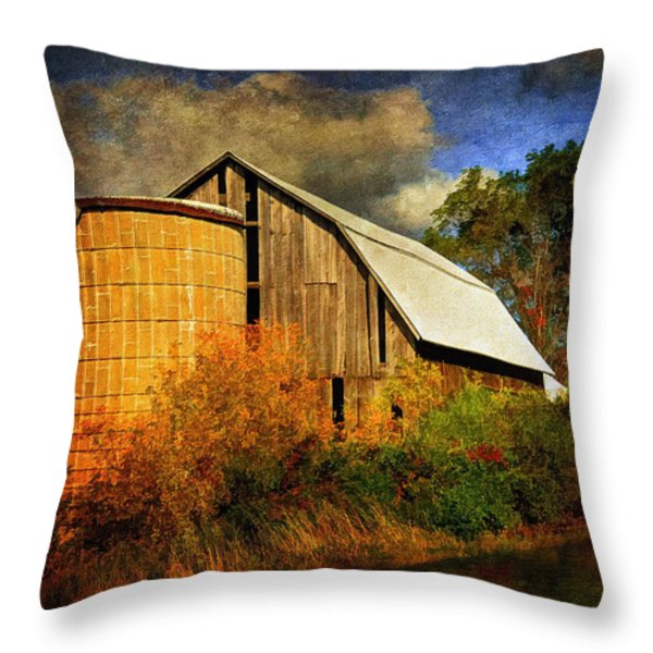 In The Gloaming Throw Pillow by Lois Bryan