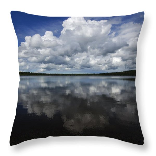 In The Good Old Summertime  Throw Pillow by Bob Christopher