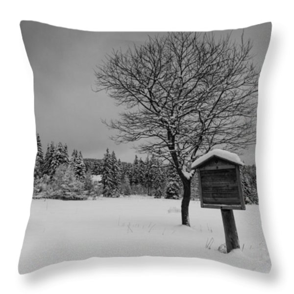 in the Harz National Park Throw Pillow by Andreas Levi