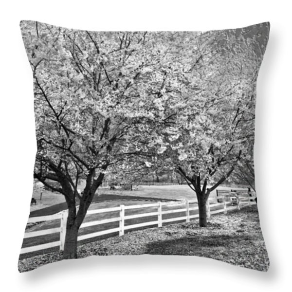 In The Park Throw Pillow by Debra and Dave Vanderlaan