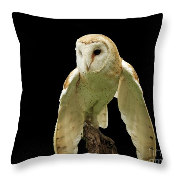 In The Still Of Night Barn Owl Throw Pillow by Inspired Nature Photography By Shelley Myke