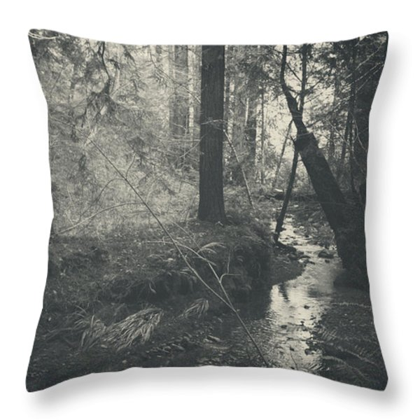 In This Silence Throw Pillow by Laurie Search