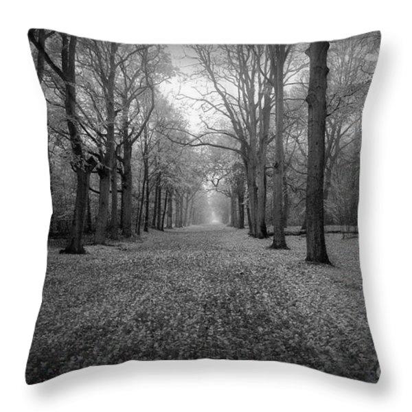 In Your Darkest Hour Throw Pillow by Photodream Art