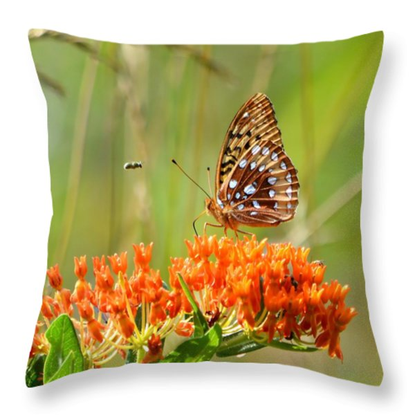Incoming Throw Pillow by Deena Stoddard