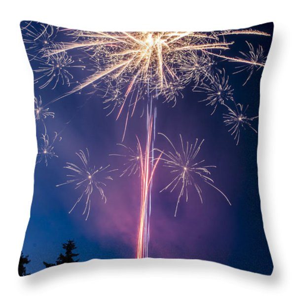 Independence Day 2014 1 Throw Pillow by Alan Marlowe