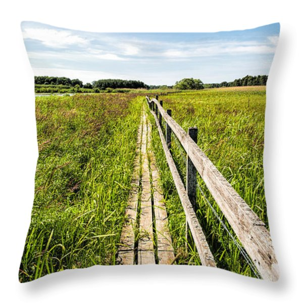 Infinity Way Throw Pillow by Leif Sohlman