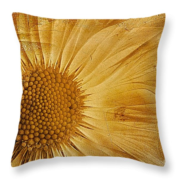 Infusion Throw Pillow by John Edwards