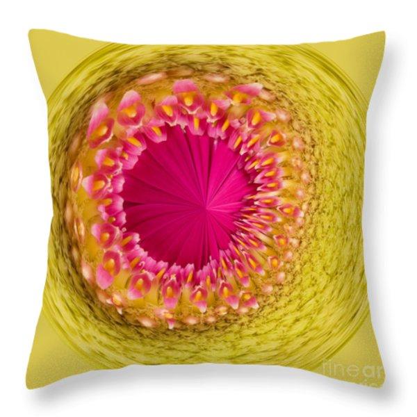 Inner Gerbera Throw Pillow by Anne Gilbert