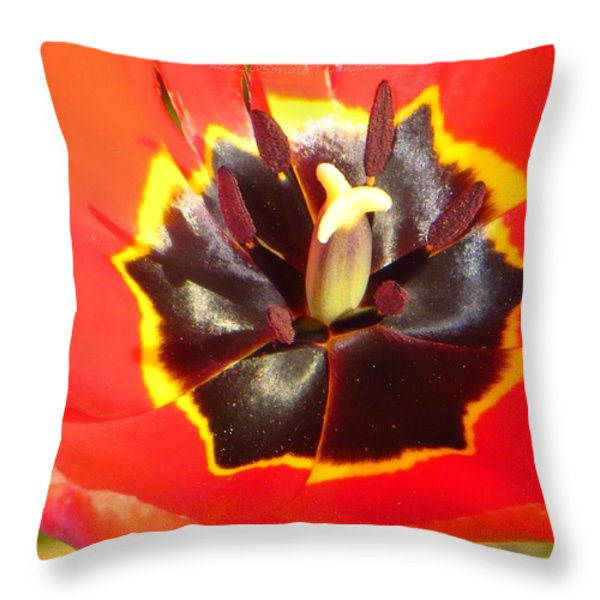 Inner Power Throw Pillow by Sonali Gangane