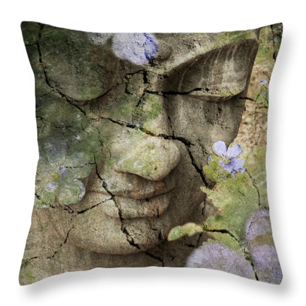 Inner Tranquility Throw Pillow by Christopher Beikmann